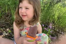 Green Living Blog: Homemade Popcicles