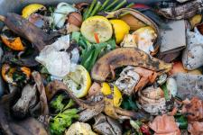 Philadelphia to launch city-wide composting network of up to 25 sites